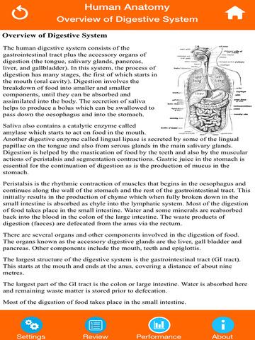 Anatomy : Digestive System screenshot 10