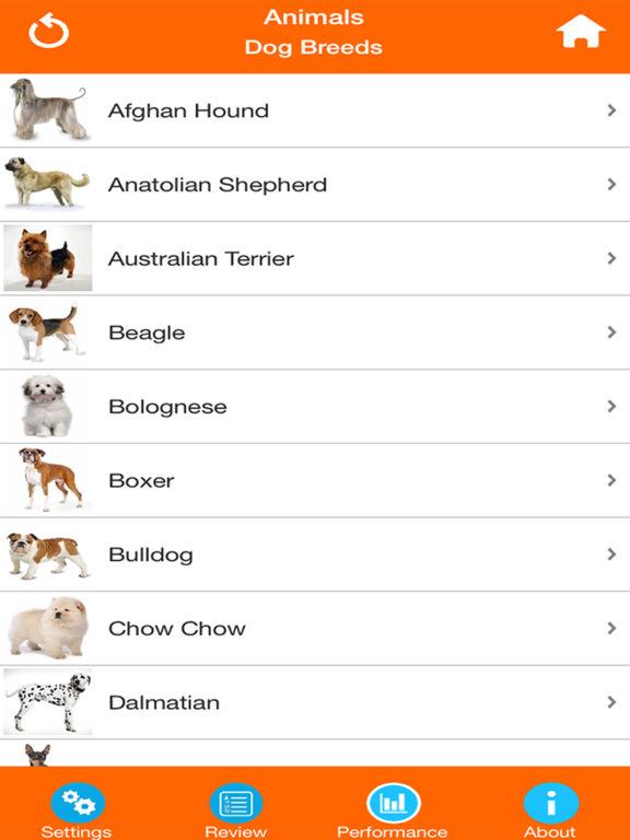 Dog Breeds Quizzes screenshot 9