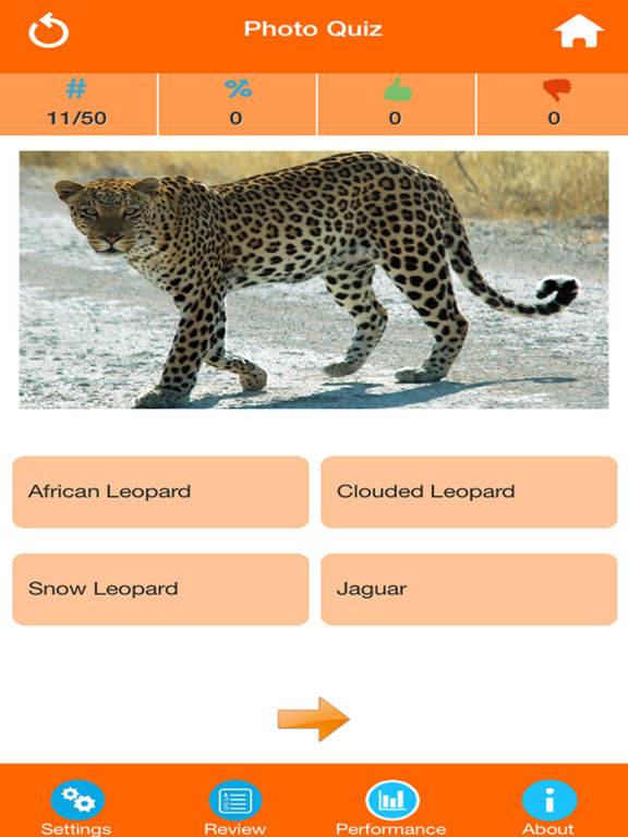 Animals : Wild Mammals Quiz screenshot 9