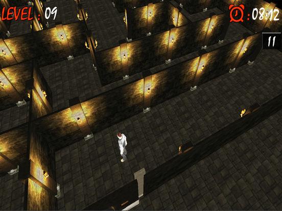 Maze Runner Labyrinth 3D : Free Maze Game screenshot 4