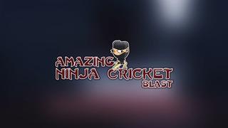 Amazing Ninja Cricket Blast Pro - best bouncing ball batting game screenshot 3