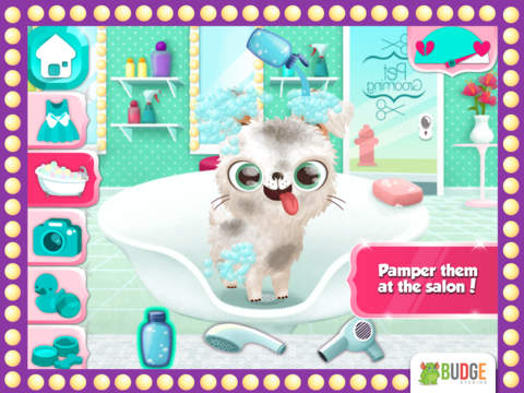 Miss Hollywood – Fashion Pets screenshot 8