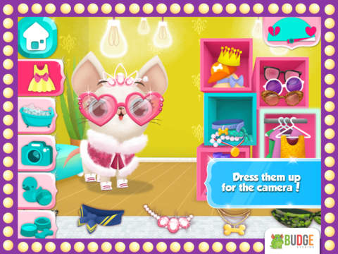Miss Hollywood – Fashion Pets screenshot 7