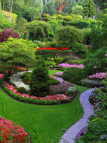 Yard & Garden Design Ideas PRO, Landscaping Decor screenshot 10