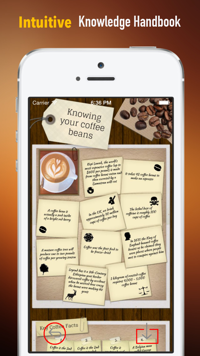 Coffee 101: Quick Study Reference with Video Lessons and Brewing Guide screenshot 1