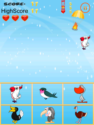 Free Bird Game American Bird Match And Catch screenshot 6