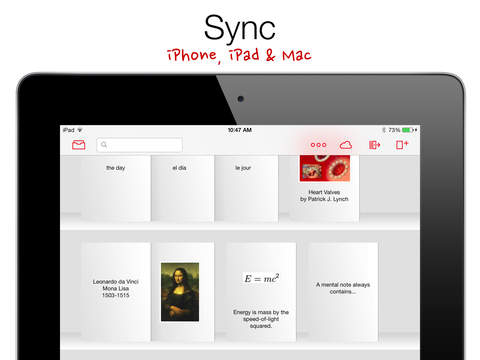 Mental Case — Flashcards for the Serious Student screenshot 9