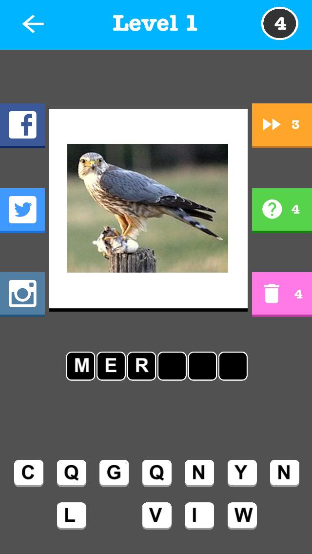 Bird Trivia - Word Quiz Game screenshot 3