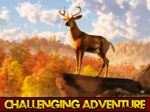2016 Deer Hunter Pro Challenge : African White Tail Hunting season screenshot 6