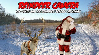 Reindeer Camera HD screenshot 1