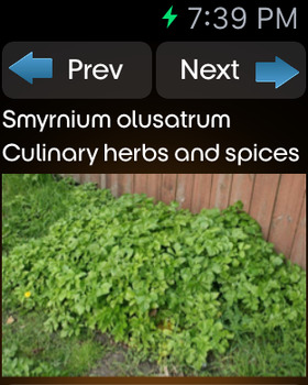 Herbs and Spices Info screenshot 13