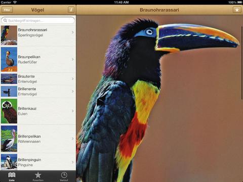 1000 Vögel aus aller Welt screenshot 10