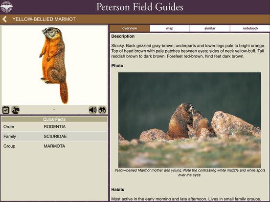 Peterson Mammals Field Guide screenshot 7