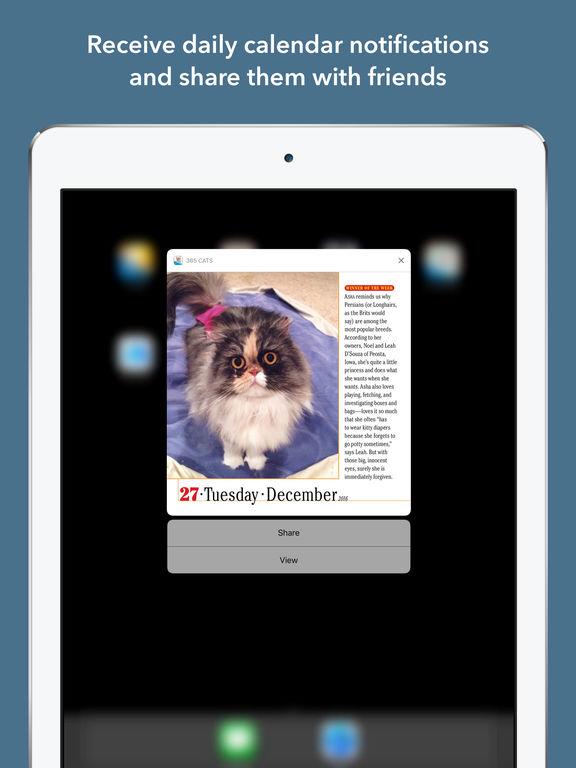 365 Cats Page-A-Day Calendar 2017 screenshot 7