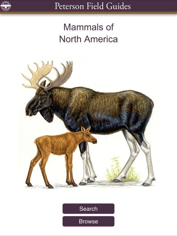 Peterson Mammals Field Guide screenshot 6