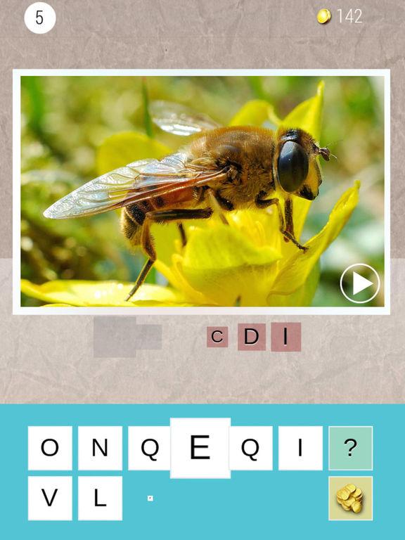 Audio words - Guess the word (Premium) screenshot 6