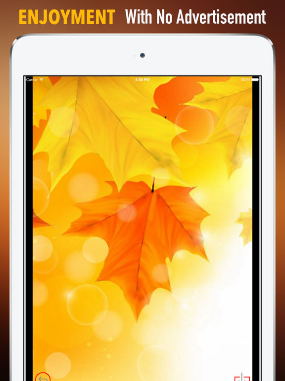 Autumn Leaf Wallpapers HD: Quotes Backgrounds with Art Pictures screenshot 7